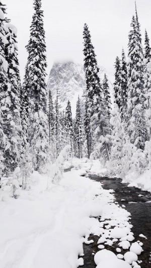 精选绝美冬日雪景图片手机壁纸