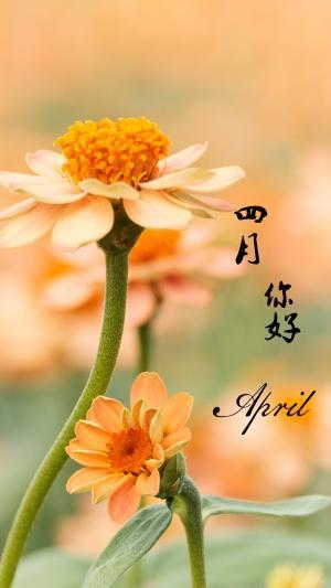 四月你好文字图片