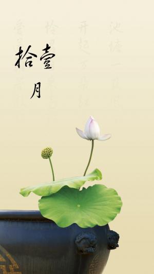 莲花中国风十一月你好的图片