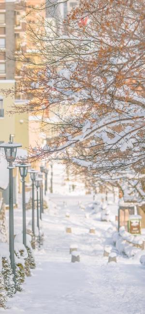 冬日梦幻治愈街道雪景