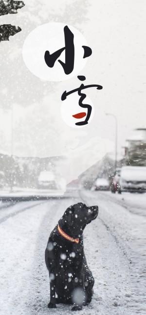 小雪之抬头望见漫漫雪花