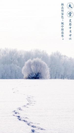 大雪节气雪万里