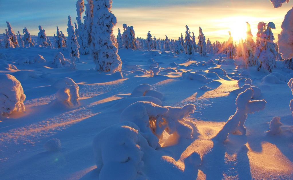 冬日大雪室外自然风景写真