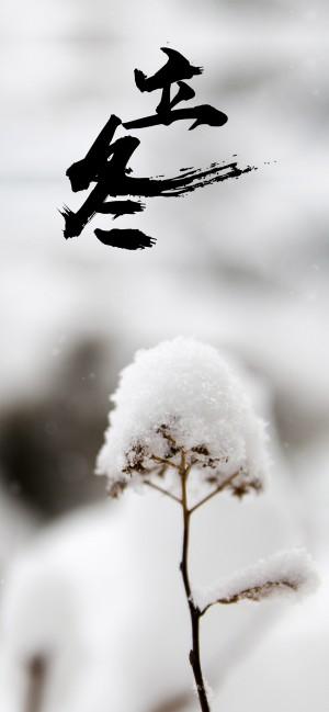 冬季的開始是立冬
