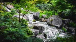 森林小溪唯美风景高清桌面壁纸