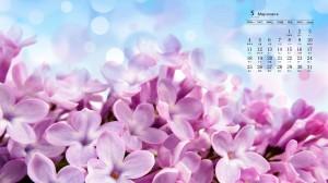 2020年5月小清新唯美花卉日历壁纸