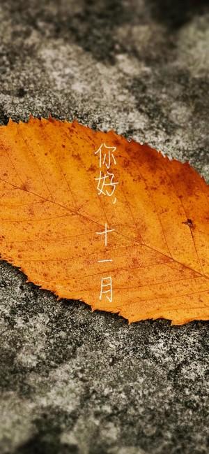 十一月你好秋天唯美壁纸