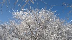 绝美崂山冬景高清桌面壁纸
