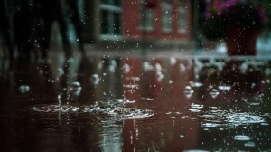 24節氣之清明時節雨紛紛