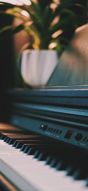 高贵雅致的钢琴写真