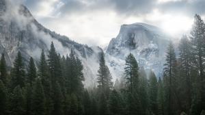 优胜美地国家公园冬日森林雪山风景图片