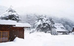 日本冬日优美雪景图片桌面壁纸