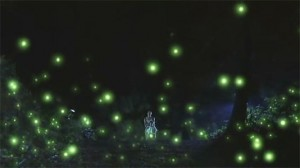 萤火虫耀眼高清桌面壁纸