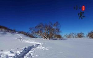 小寒节气养眼雪景风光