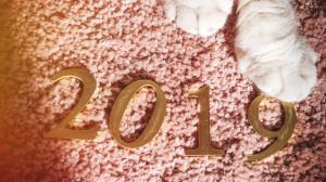 2019唯美字体图片桌面壁纸