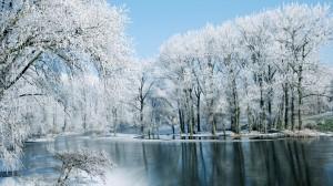 迷人冬季雪景高清桌面壁纸