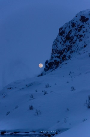 唯美夜晚雪景