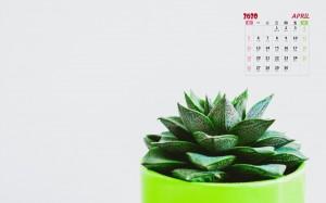 2020年4月小清新盆栽日历壁纸