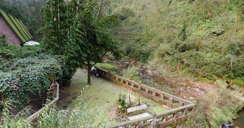 四川碧峰峡风景图片
