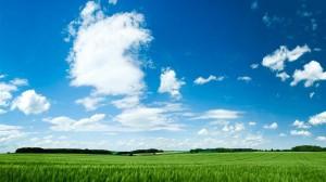 多彩夏日风光图片高清壁纸