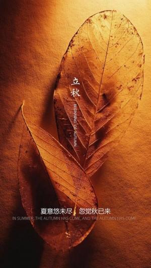立秋落叶创意带字图片