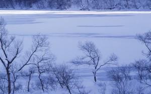 二十四节气之冬至时节
