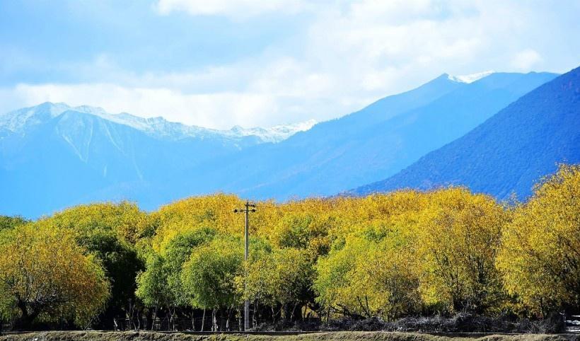 西藏林芝初冬唯美风景
