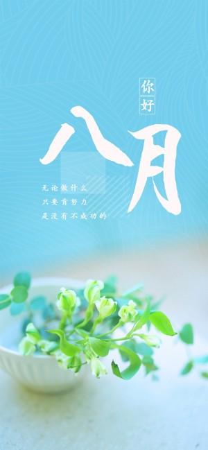 八月你好蓝色清新简约盆栽手机壁纸