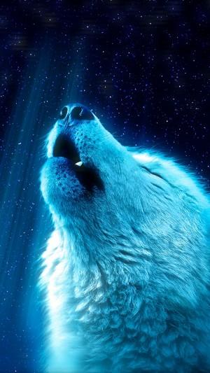 仰天长啸的狼