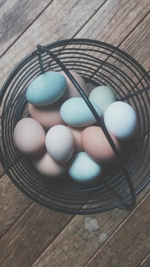 篮子里的彩蛋