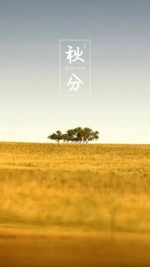 二十四节气秋分唯美风光图片