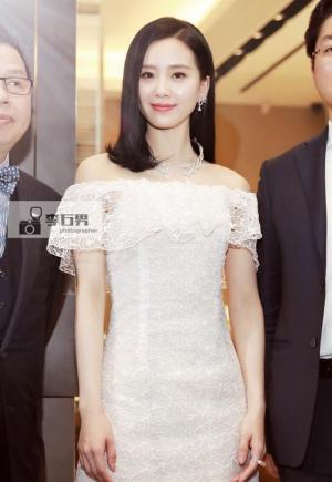刘诗诗白裙出席活动优雅大方图片
