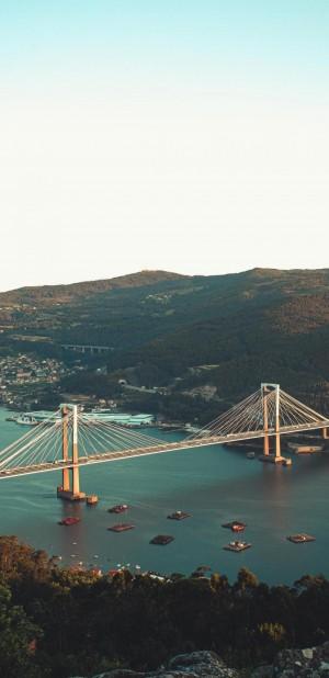 壮丽的城市桥梁风光