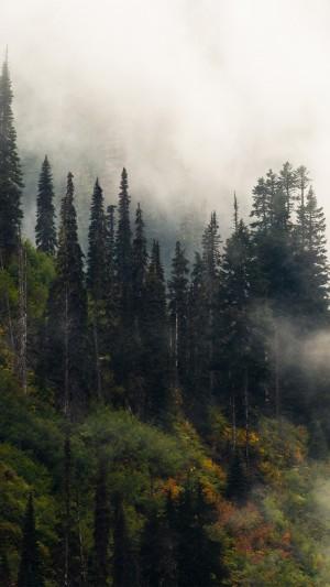 静谧大自然风景手机壁纸