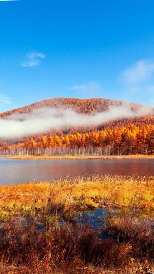 大兴安岭深秋金色风景图片