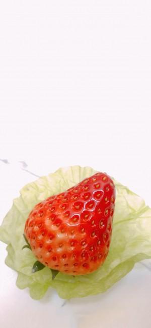 美味草莓摄影高清手机壁纸