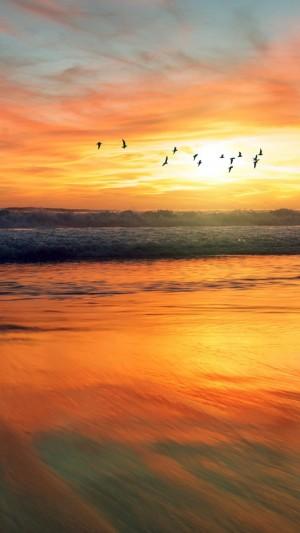 夕阳下的迷人海景风光