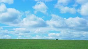 清新绿色养眼高清风景桌面壁纸