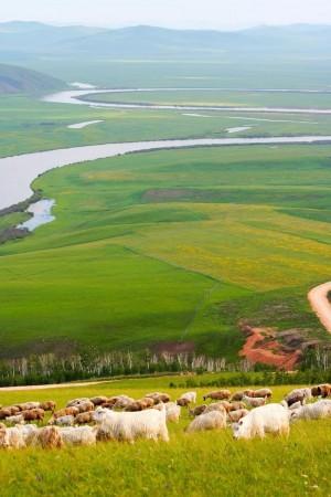 呼伦贝尔草原唯美风景图片