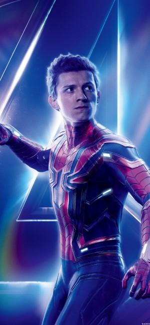 蜘蛛侠全面屏手机壁纸