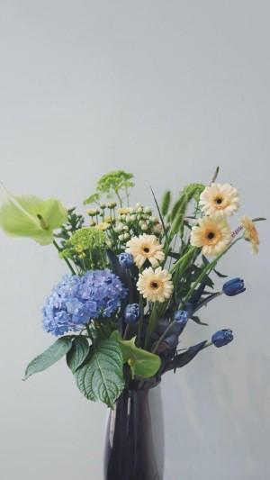 文艺清新植物花卉唯美静物摆拍