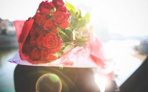 情人节唯美的红玫瑰桌面壁纸