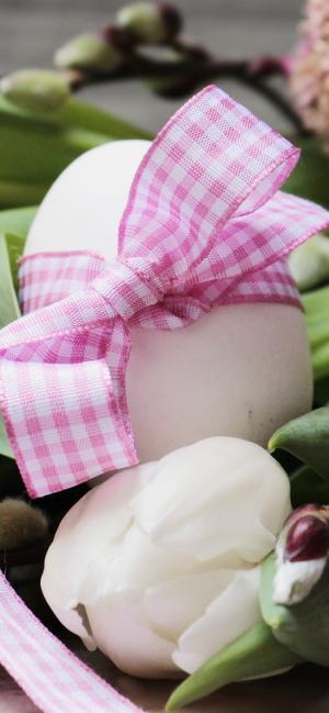 丝带绑起来的彩蛋