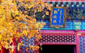 香山最优美秋景