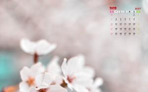 2020年5月浪漫梦幻樱花盛开日历写真
