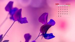 2020年3月清新唯美的花朵日历壁纸