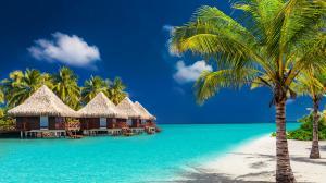 马尔代夫绿色风景摄影超清桌面壁纸