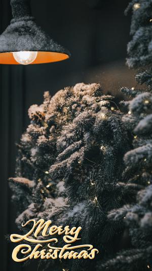 圣诞节温暖雪夜灯光布置摄影
