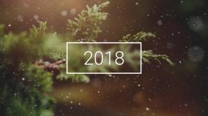 2018年雪花开始漂落