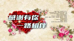 感恩节简约文字图片